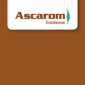 Ascarom